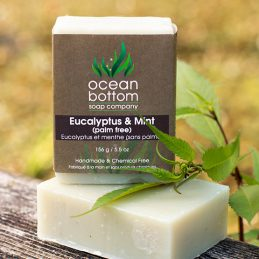 Eucalyptus & Mint (palm free)