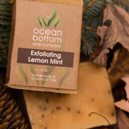 Exfoliating Lemon Mint