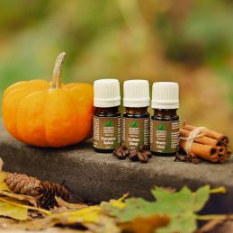 Essential Oil Fall Blends